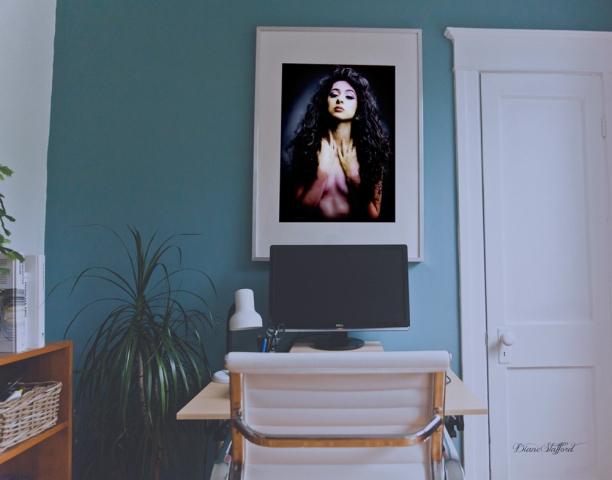 Ariana Pink Portrait | Diane Stafford
