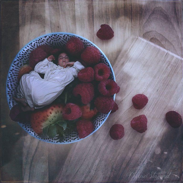 Sleepy Berries Cream | Diane Stafford